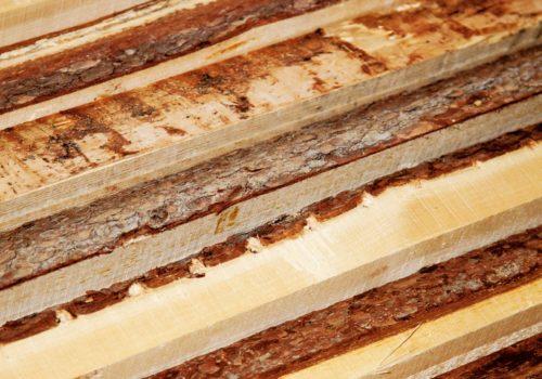 legno grezzo, corteccia, © luigi tremolada